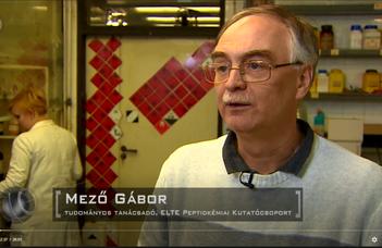 Interjú dr. Mező Gáborral a Novumban