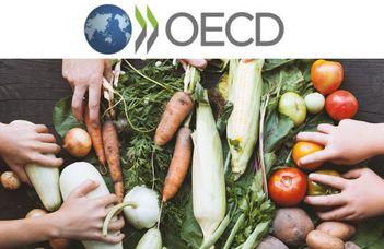Élelmiszeripar, mezőgazdaság, erdészet és halászat